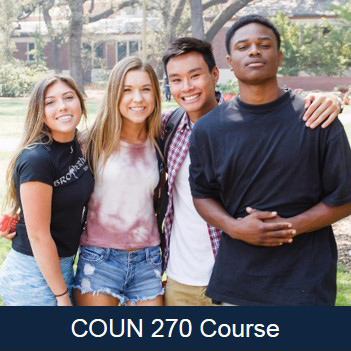 Counseling 270
